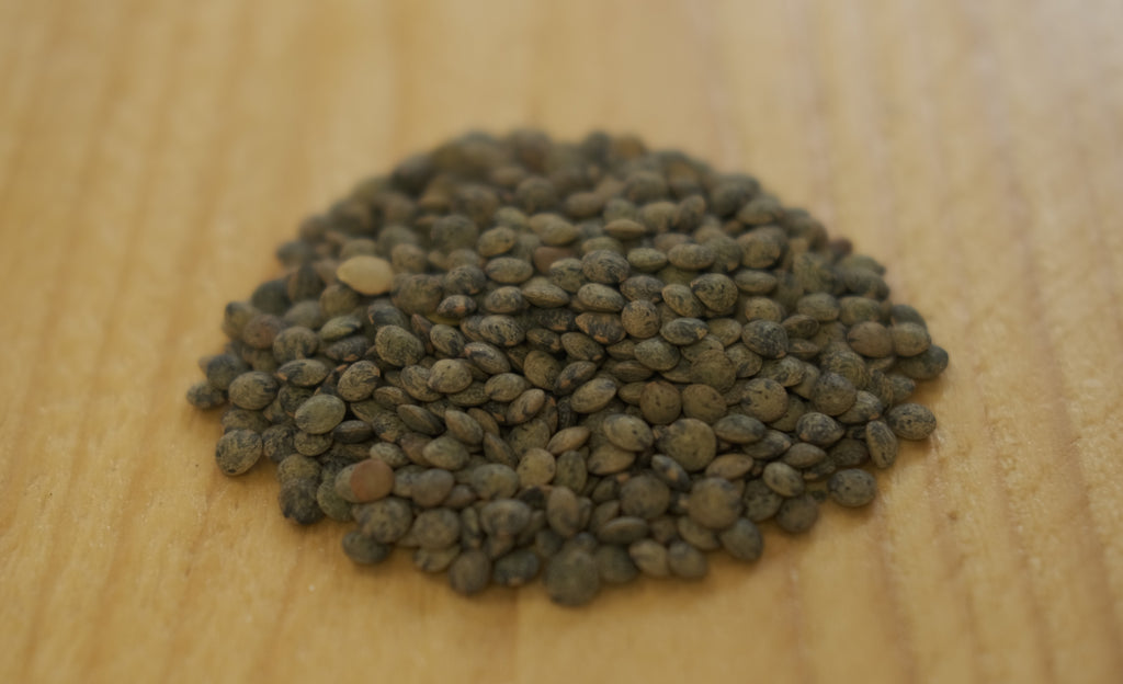 Dark Speckled (French puy) lentils
