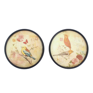 "9"" x 9"" Multi-Color, Rustic, Bird Plate - Painting Set"
