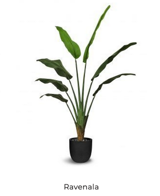 RAVENALA 130 CM ARTIFICAL TREE