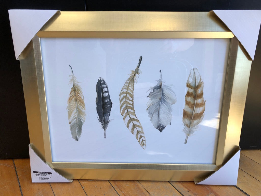 SALE! STREAMLINE ART FEATHERS 20X16
