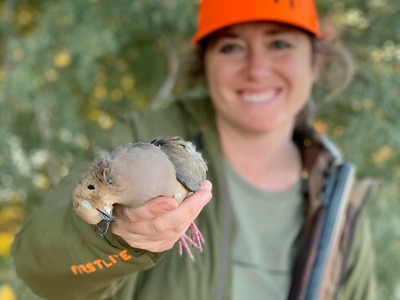 Mary's First Dove: An Interview