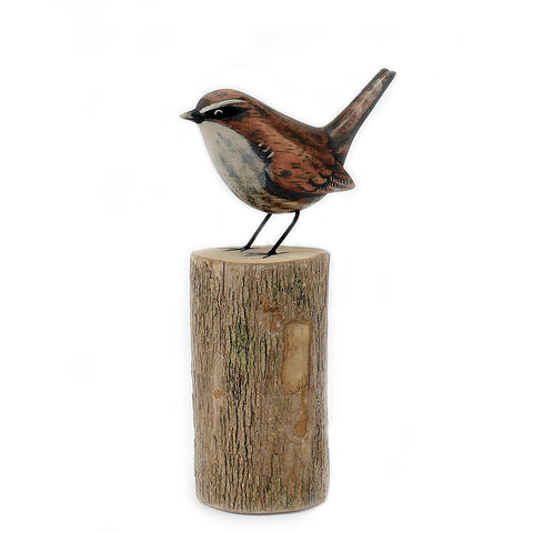 Wren on log from Archipelago