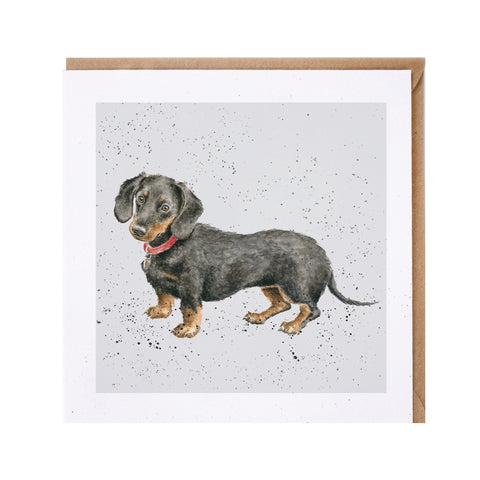 Dachshund Greeting Card from Wrendale