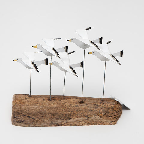 Shoeless Joe Flying Seagulls on Driftwood