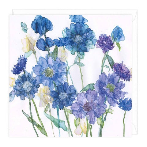 Cornflowers and Scabious Greeting Card