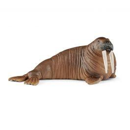 SCHLEICH WALRUS 14803  At Beattys Loughrea Galway. Www.beattys.ie