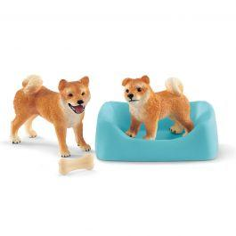 SCHLEICH SHIBA INU MOTHER AND PUPPY 42479  At Beattys Loughrea Galway. Www.beattys.ie