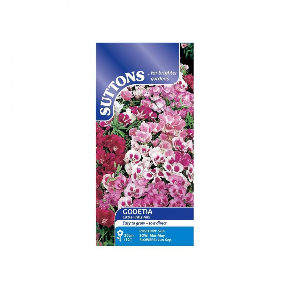 SUTTONS GODETIA LITTLE FRILLS MIXED 116688 Buy Instore or online at beattys.ie