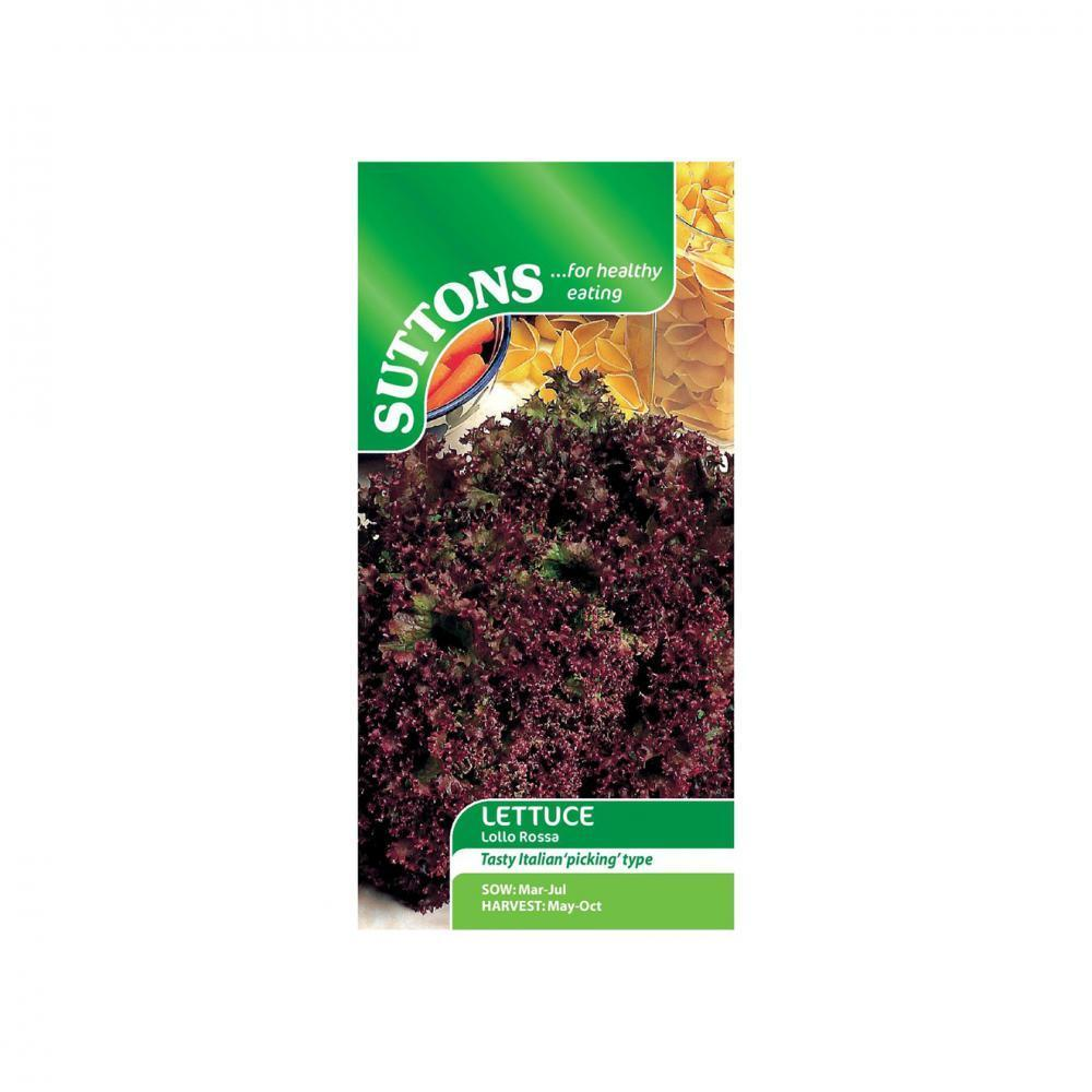 SUTTONS LETTUCE LOLLO ROSSA 168458 Buy Instore or online at beattys.ie