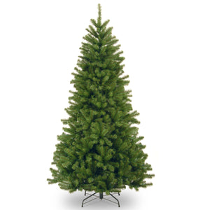 National Tree Company North Valley Spruce Tree - 7.5ft  At Beattys Loughrea Galway. Www.beattys.ie
