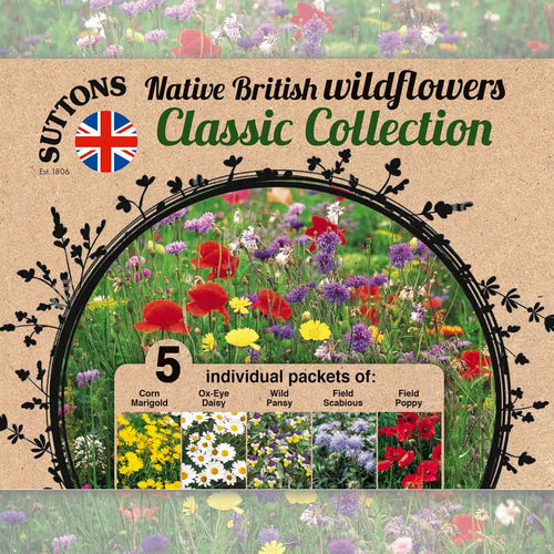 SUTTONS WILDFLOWER COLLECTION - Beattys of Loughrea , www.beattys.ie