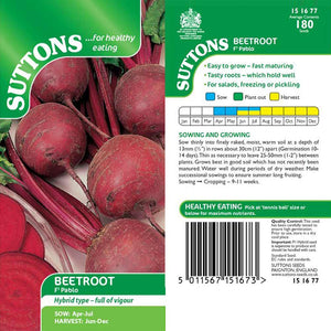 SUTTONS BEETROOT PABLO F1 151677 - Beattys of Loughrea , www.beattys.ie