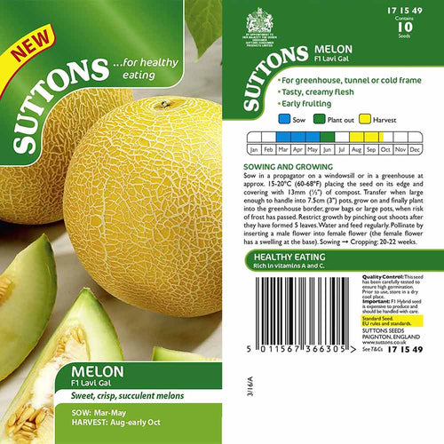 SUTTONS MELON F1 LAVI GAL G171549 - Beattys of Loughrea , www.beattys.ie