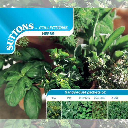 SUTTONS HERB COLLECTION 185351 - Beattys of Loughrea , www.beattys.ie