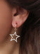 925 Sterling Silver Zirconia Hollow Star Earring Wholesale Turkish Jewelry