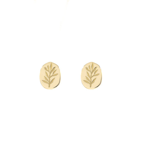 14ct Gold Olive Branch Studs