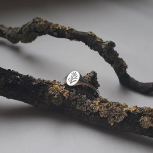Mini Olive Branch Signet Ring