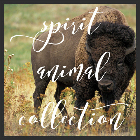 Spirit Animal Collection by Tsunrisebey