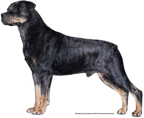 Rottweiler Products Akc Shop