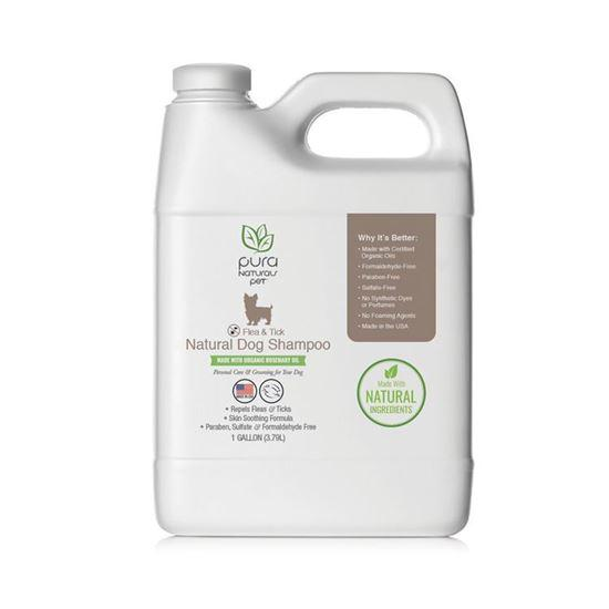 Flea & Tick Natural Dog Shampoo - 1 Gallon