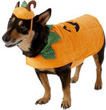 Frisco Pumpkin Dog Costume