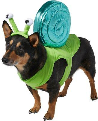 Frisco Snail Dog Costume