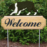 Michael Park Dog In Gait Welcome Stake Border Collie