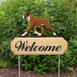 Michael Park Dog In Gait Welcome Stake Boxer