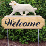 Michael Park Dog In Gait Welcome Stake Clumber Spaniel