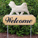 Michael Park Dog In Gait Welcome Stake Havanese