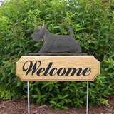 Michael Park Dog In Gait Welcome Stake Scottish Terrier
