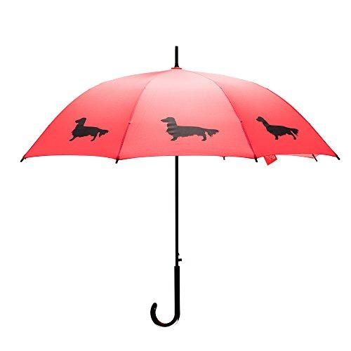 Dachshund, Longhaired, Umbrella