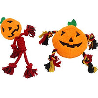Squeaky Pumpkin Dog Toy Set
