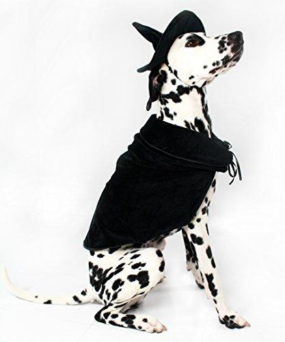 Halloween Witch Cape and Hat Dog Costume