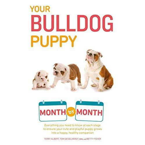 Your Bulldog Puppy: Month by Month