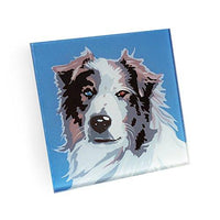 Australian Shepherd Hand Crafted Glass Dog Coasters