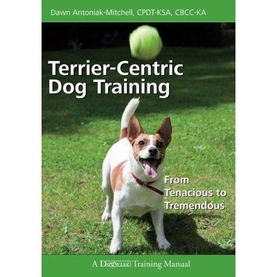 Terrier-centric Dog Training: From Tenacious to Tremendous