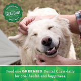 GREENIES Petite Natural Dental Dog Treats
