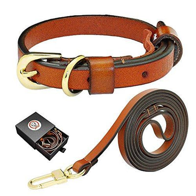 Luxury Genuine Leather Dog Collar and Leash Set