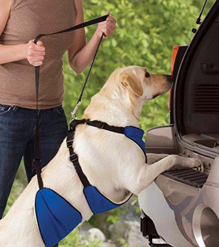 Lift & Lead 4-In-1 Dog Harness