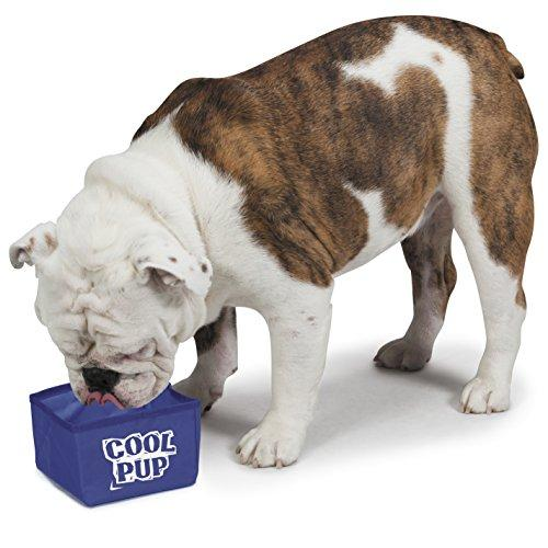 Cool Pup Portable Dog Bowl