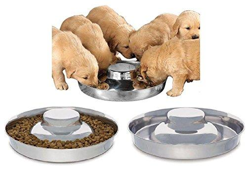 Stainless Steel Puppy Feeding Dog Bowl
