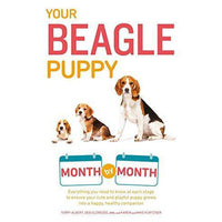 Your Beagle Puppy: Month by Month
