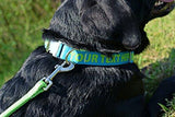 Personalized Premium Dog Collar with Metal Clasp - Available 20 Colors + Multiple Sizes