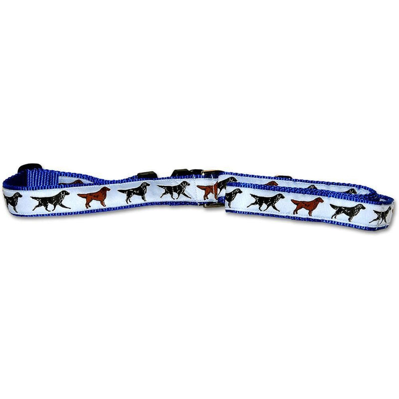 Flat Coated Retriever Collar and Leash Set