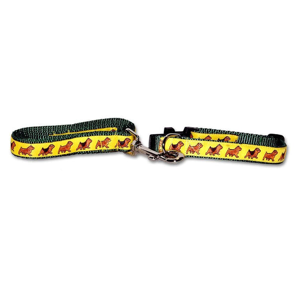 Norfolk and Norwich Terriers Collar and Leash Set