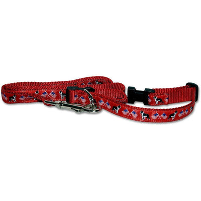 Boston Terrier Collar and Leash Set