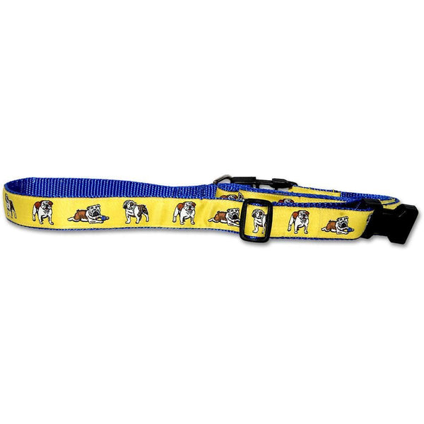 Bulldog Collar and Leash Set