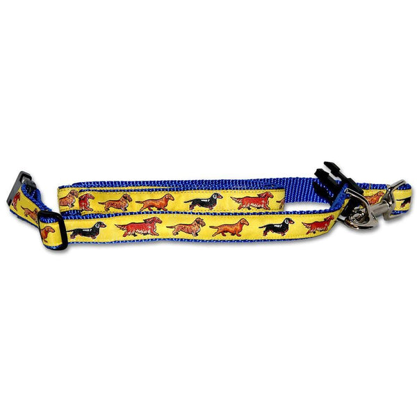 Dachshund Collar and Leash Set