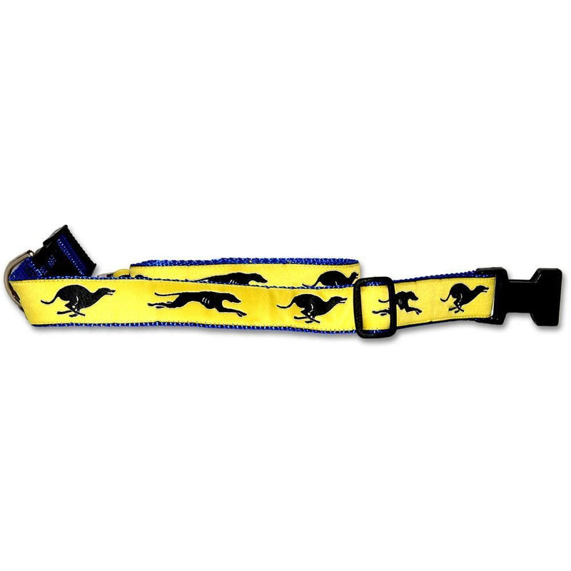 Greyhound Collar and Leash Set